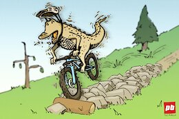 Opinion: The Case For Being 'Over-Biked'