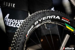 Vittoria Release New Downcountry Tire - The Syerra