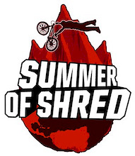 Summer Of Shred partners with Wheels4Life to Create Flips4Life