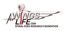 The charity auctions in favor of Wings for Life are about to start