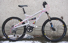 Project: Wife's Bike