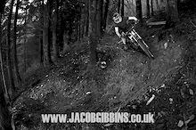 Locals - James Matthews