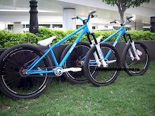 Bear's bikes DRAG
