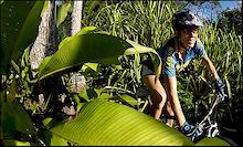 Marla Streb's Costa Rica Riding Camp