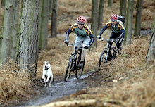 Volunteers needed for new Staffordshire Bike Trail - UK