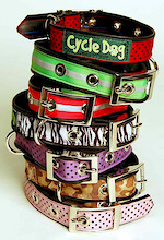 Cycle Dog Leashes and Collars.