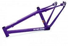 Dobermann Bikes 2010 Pinscher evolutions