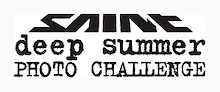 Last Day to Vote for the Deep Summer Challenge Wildcard!