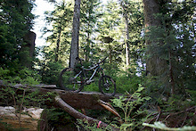 2011 Norco Range 1: A week on the trails