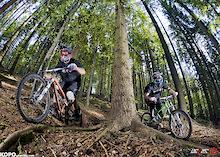 www.weeze.pl  -  www.vincere.pl  -  www.kopo.ownlog.com