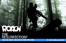 Roach - The Resurrection?