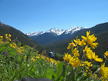 South Chilcotins Mountain Park: Have your say
