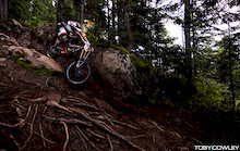 Whistler Mountain Bike Park's Elements of Perfection - Roots