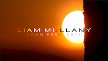 Liam Mullany Year(s) in Review