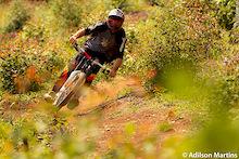 Mountain Bike in my Head - Thiago Velardi