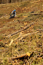 The Clearcut