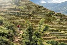 Vietnam on Two Wheels