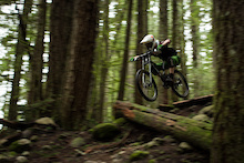 Video: Fast Forrest