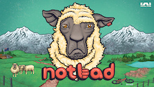 NotBad Available on Netflix