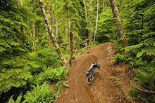 Oregon's Sandy Ridge Trail System