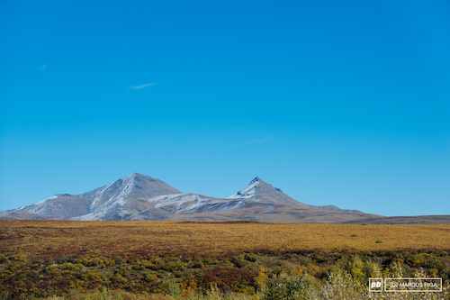 The mix of plains land and distant mountains was very 'other country' feeling. This spot reminded me of Argentina.