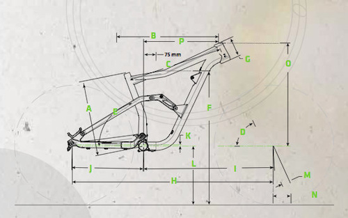 Cannondale Trigger Geometry