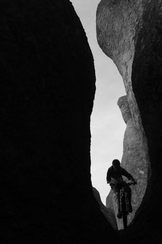 <i>Photo:Sterling Lorence</i>