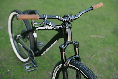 Ray George s DH Bike