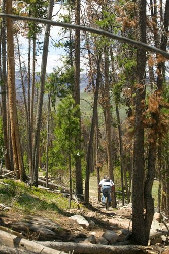 A great day for singletrack and solitude in the mountains.