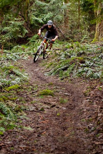 Slicing singletrack is the bike's forte