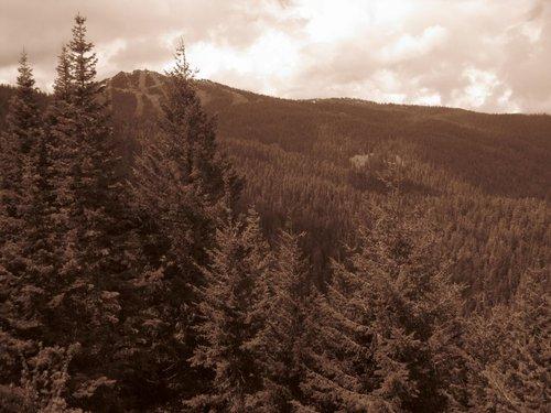 Looking back at Mt.Ashland after the big climb.
