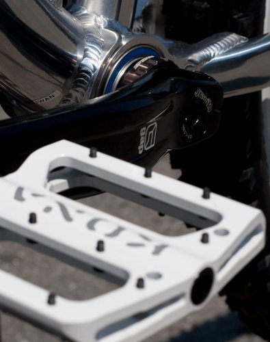 Pedals and bearing