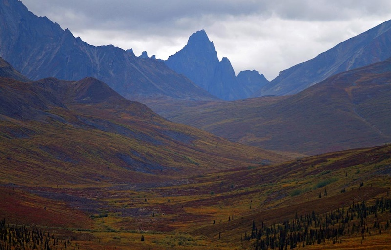 Typical Dempster Northern Yukon fall colours. The fall reds oranges yellows went from faint to startling in the week we spent on the Dempster Highway. This was taken on our way back heading south from the Artic Circle to Dawson City at Tombstone Lookout