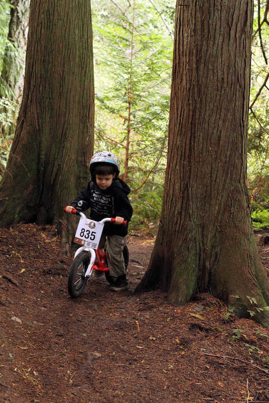 IMBA s Take a kid Mt biking Day Anacortes Community Forest Lands. Sawyer climbing up between two large Red Cedars conserved for our future generation riders to clip bars on.