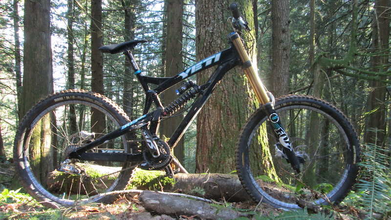 a random series of occasional photos displaying bicycles leaning against objects in the forest