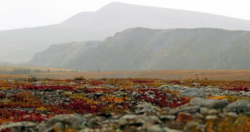 At the Yukon NWT border