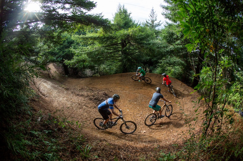 Wide flowing trail with huge mega berms beginning with views across Rotorua and descending into the Redwoods forest.