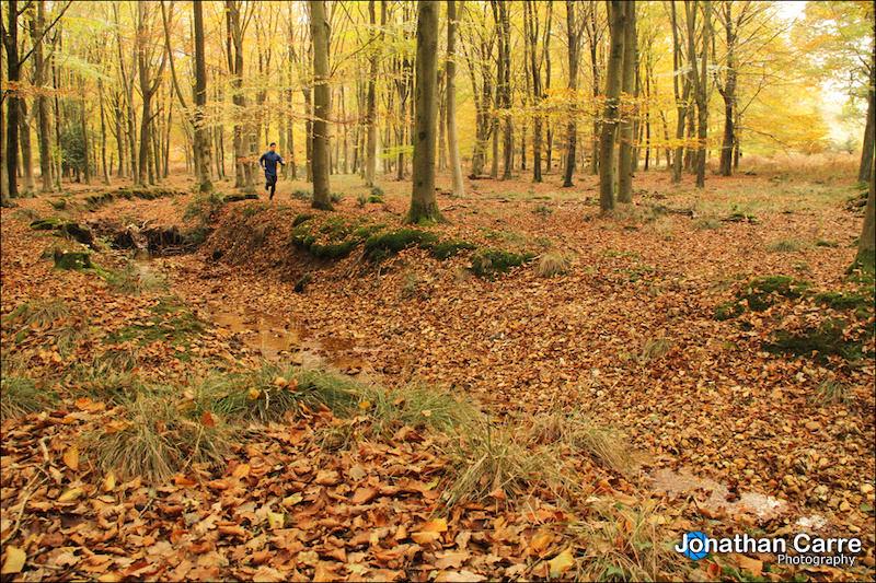 Self portrait of autumn trail running in the New Forest.