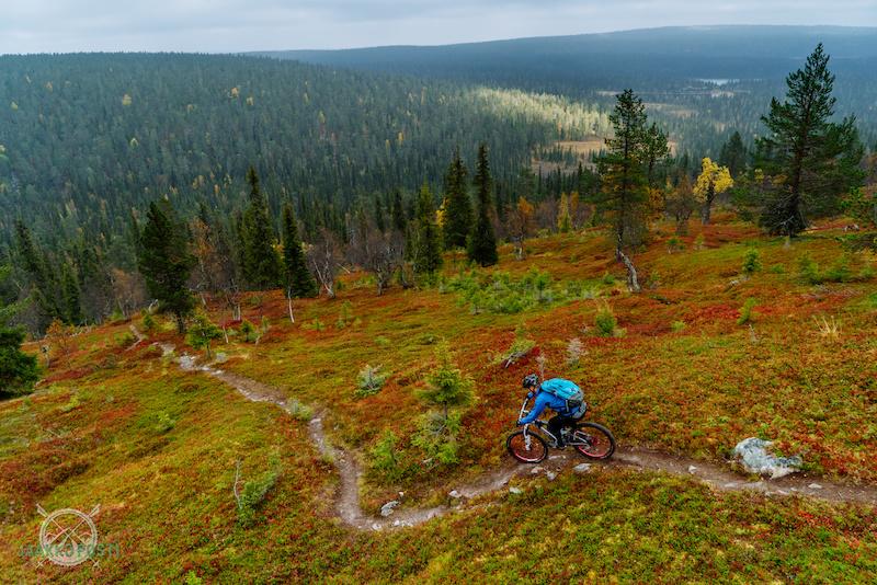 Riding in Lapland