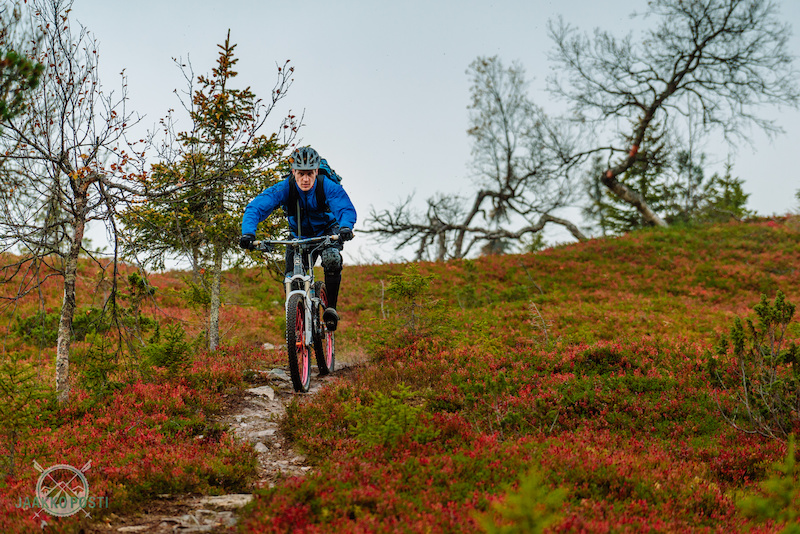 Riding in Lapland