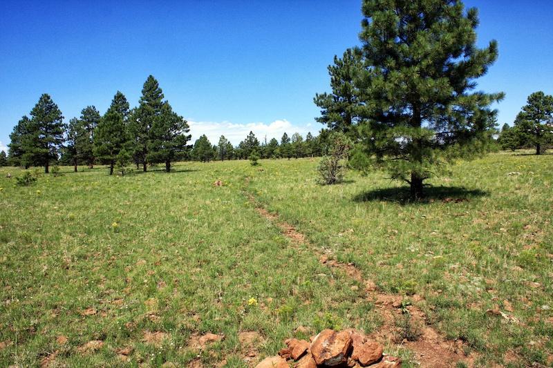 The Arizona Trail via Mountain Bike