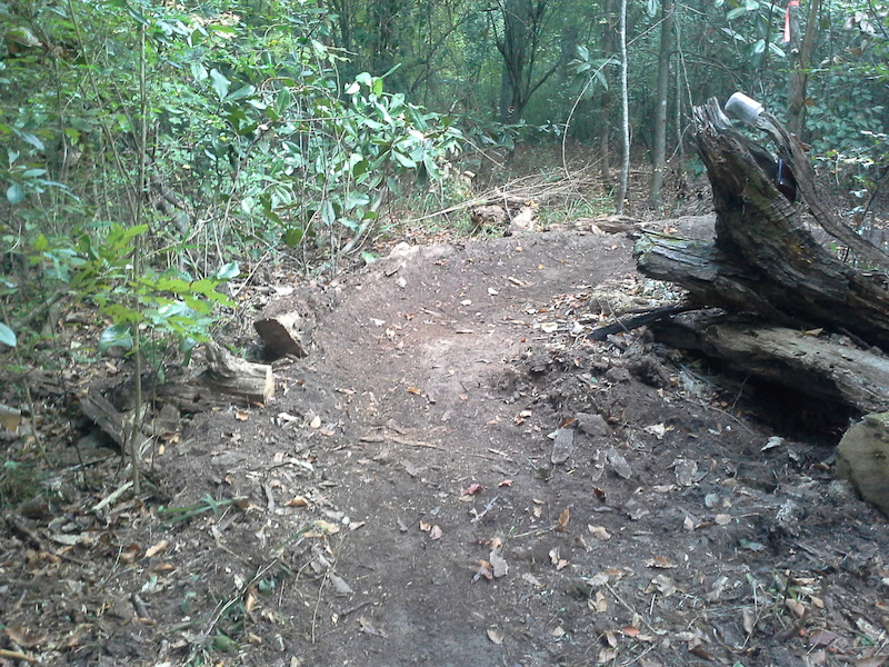 One of several berms on trail 1. This one is located near the crater .