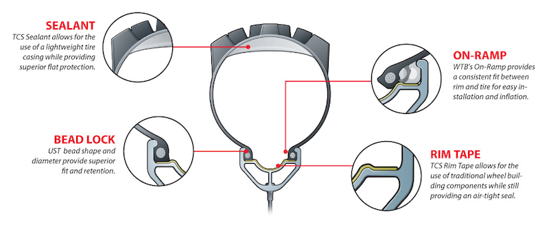anatomy of a tubeless feady tire and rim.