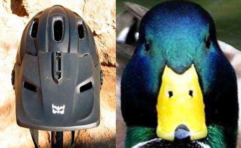 helmet  vs  duck