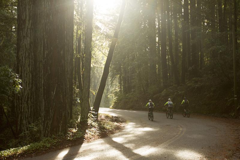 9 December 2014 - at Santa Cruz Bicycles in December 2014. Photo by Gary Perkin
