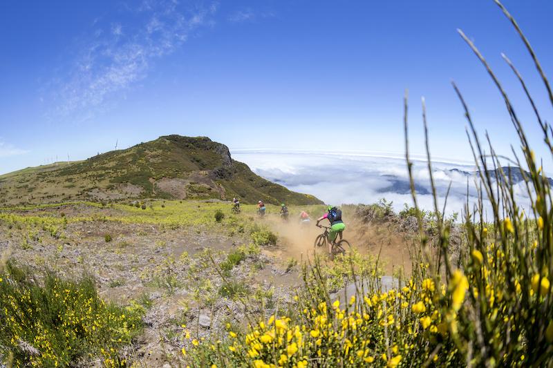 Copyright Markus Greber Photography - Madeira 2014