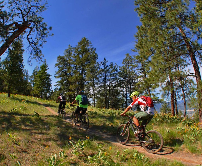 Research for the Locals Guide to Okanagan Rides Rich V photo