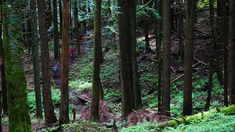 Pic 16 Mt. Sumas is a must go for anyone in the lower mainland. Photo by Amy McDermid.