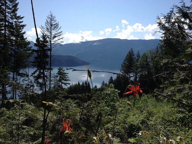 Pic #21 – The view looking out over Harrsion Lake