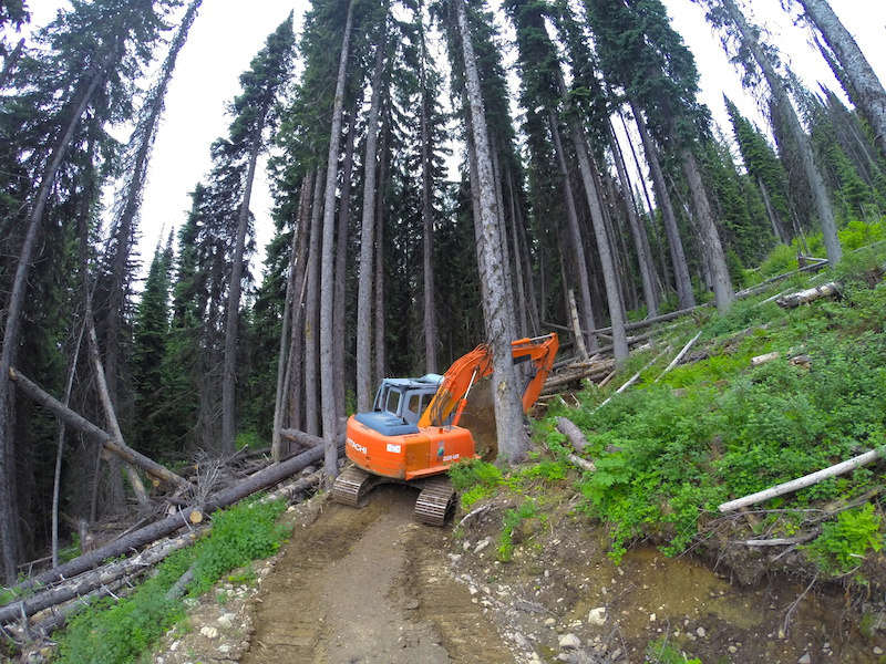 The Hitachi is the right tool for the right job. Beyond these trees is the wrong job.